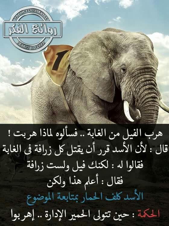 DesertRose,;,so true,;,