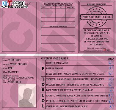 Les 25 meilleures id es de la cat gorie permis de conduire for Interieur gouv point permis