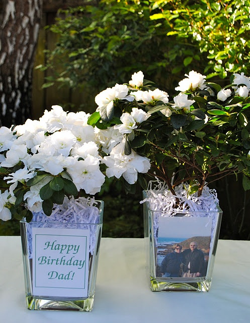 Photograph and potted plant as take away centerpiece and table number | Table-ideas & floral ...
