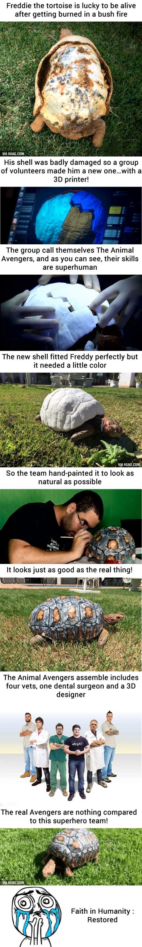 [Warning Strong Graphic] Injured Tortoise Receives World's First 3D Printed Shell