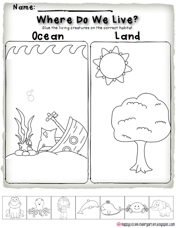 Ocean Habitat FREEBIE! Perfect for science centers and ocean investigations!