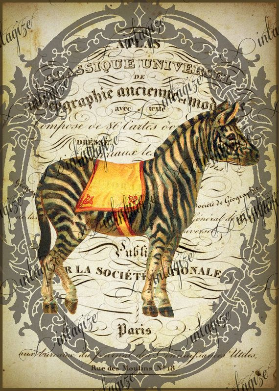 Instant Art Original Print French Circus Zebra Ready by Vintagize, $3.25