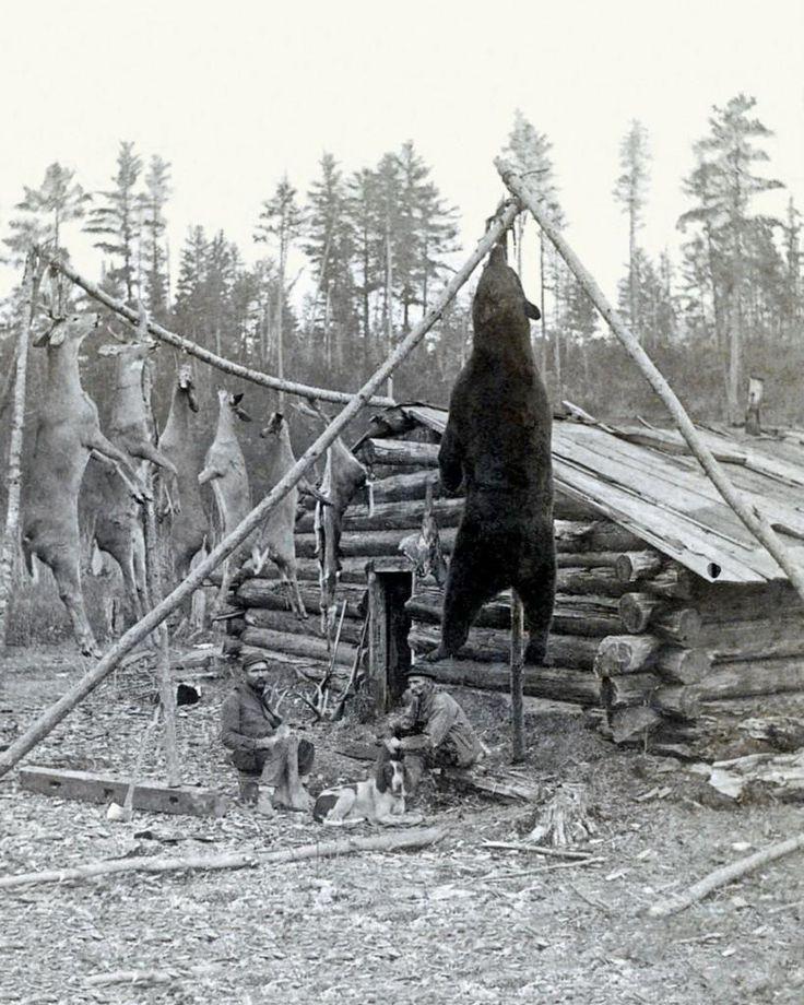 1880 HUNTERS CABIN, RIFLES HUGE WHITETAIL BUCK DEER & BEAR http://riflescopescenter.com/category/barska-riflescope-reviews/