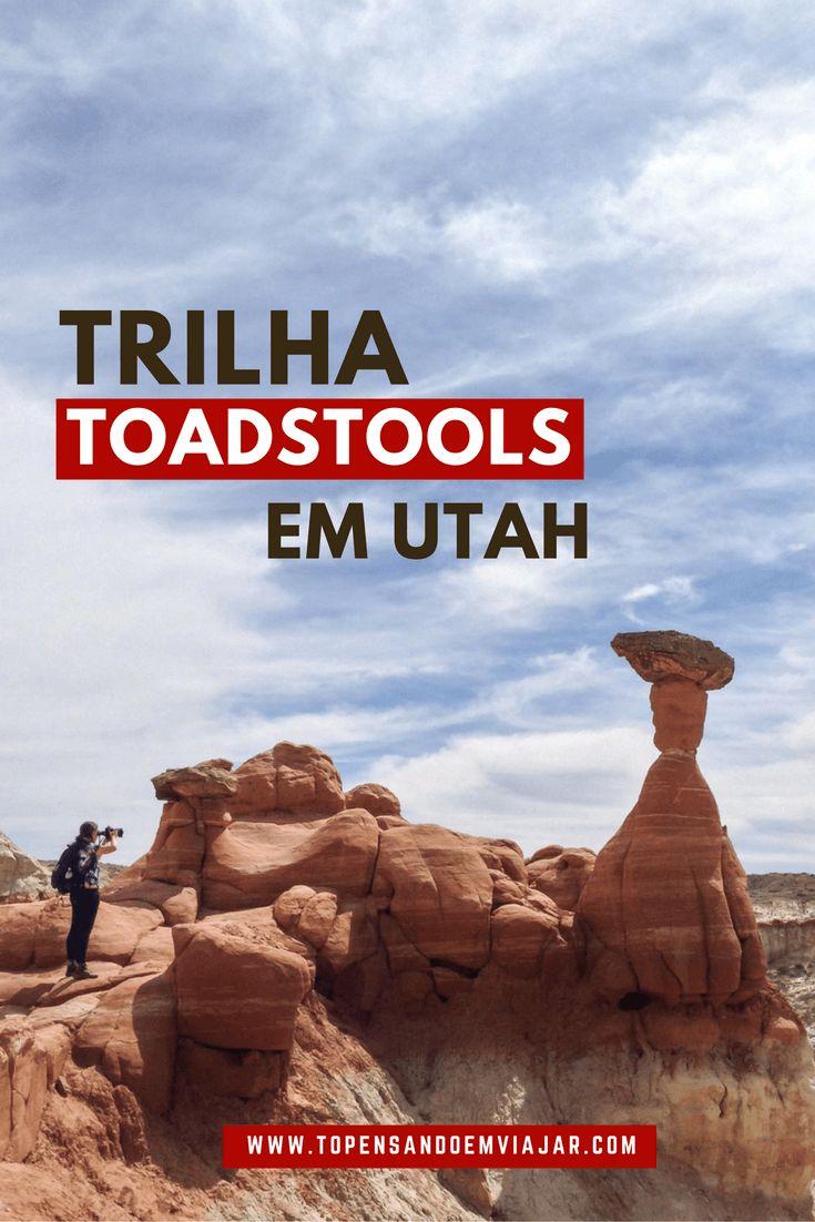 Continuando nossa road trip de 2 semana pelo oeste americano, deixamos Page, no Arizona, em direção ao Zion National Park, em Utah. Seguindo as recomendações do nosso anfitrião Bubba, paramos na Hwy 89, pra percorrer a Trilha Toadstools,mais ou menos...