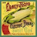 Olney Floyd Sweet Corn