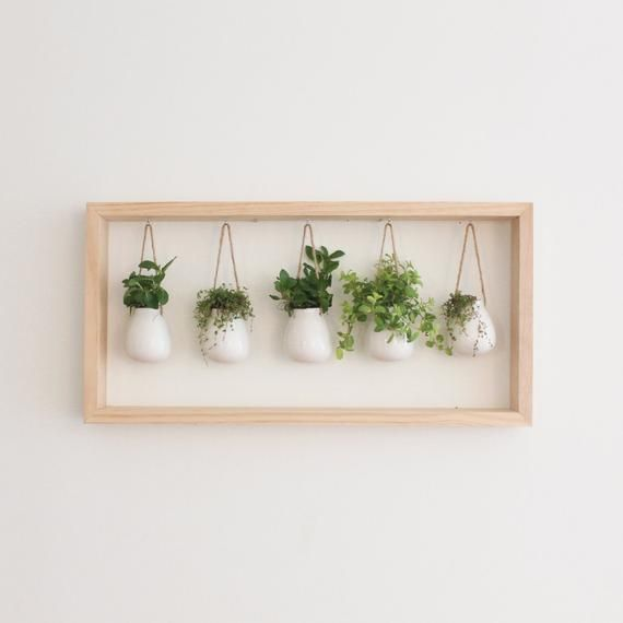 Indoor Herb Garden In Wooden Frame Wall Mount Planter Etsy Wall Mounted Planters Succulent Garden Indoor Frames On Wall