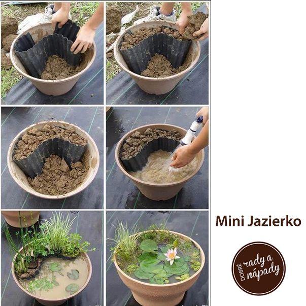 Mini Jazierko