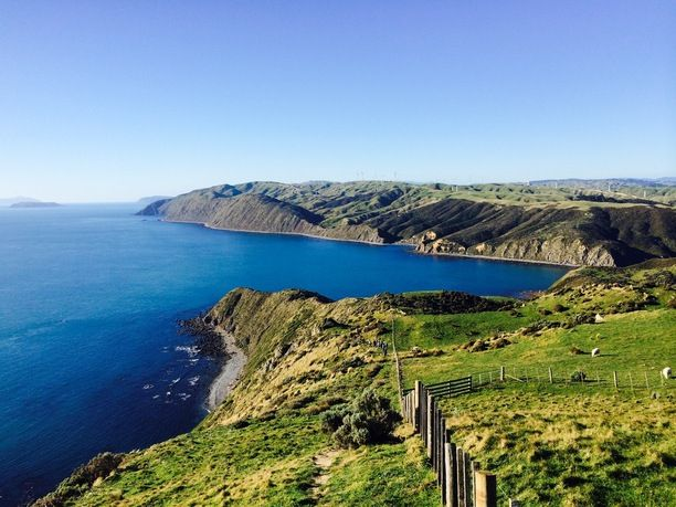 Makara Beach, Wellington, New Zealand — by Living a Kiwi Life. Exploring the cliffs of Makara Walkway outside Wellington Read more about this beautiful short walk...