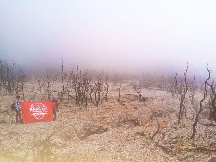 Antara Bargot, Hutan Mati dan Kabut (@ Mt. Papandayan)