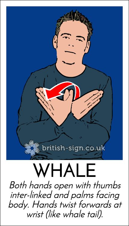 British Sign Language - Online Course, Dictionary, & Game