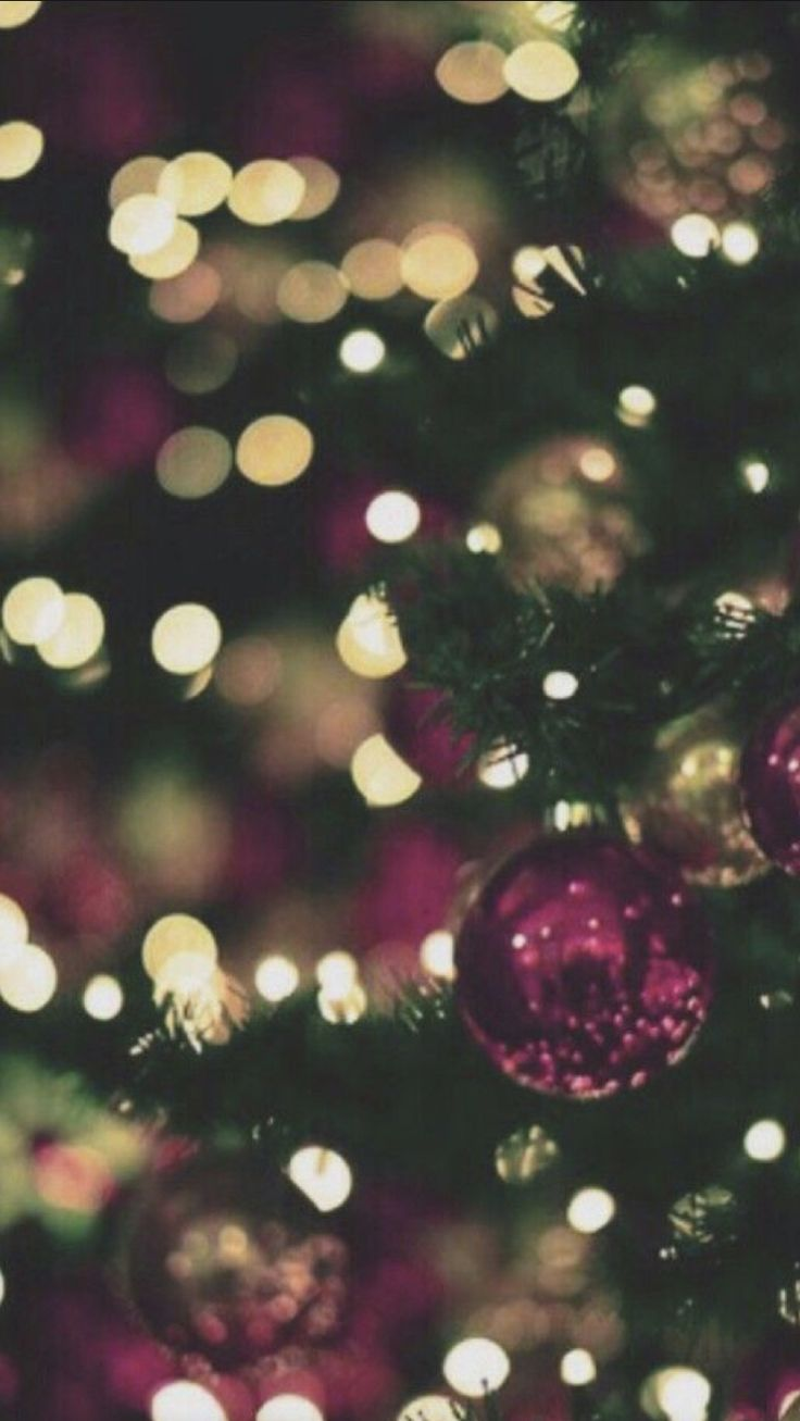 Christmas Is Coming Pinterest