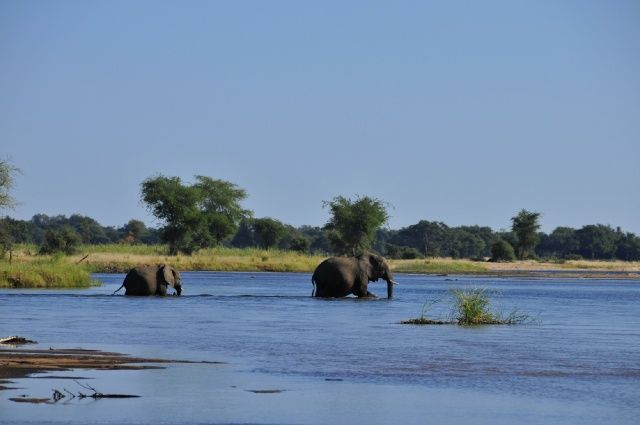 An Adventure in Zambia
