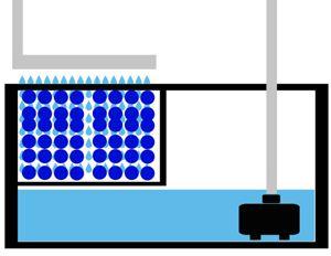 Wet Dry Aquarium Sump Filter