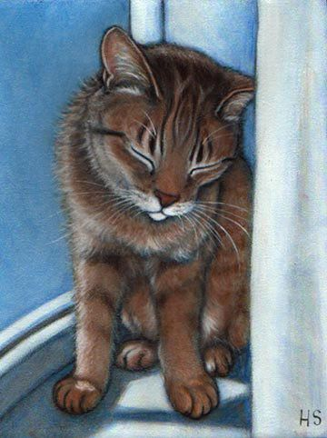 Commission an oil painting of Your Cat by Heidi Shaulis