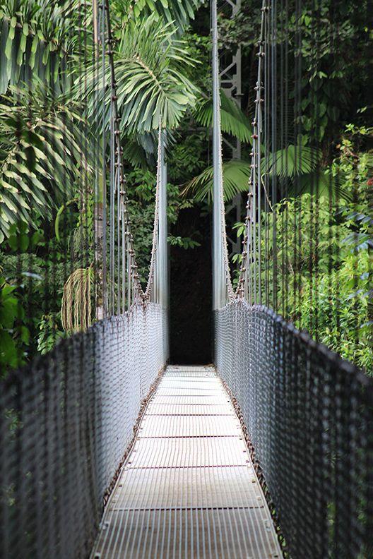 Hanging Bridges, Arenal Volcano National Park, Costa Rica