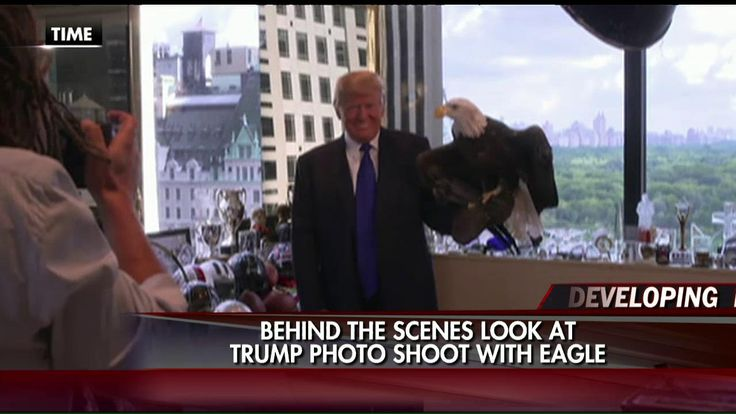 8/20/15 - WATCH: Trump Welcomes a Bald Eagle to His Office for Photo Shoot