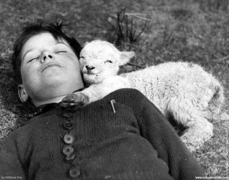 Photography by Williams Fox Photos, 1940