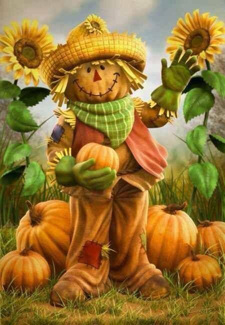 Thanksgiving picture; scarecrow; pumpkin; sunflower.