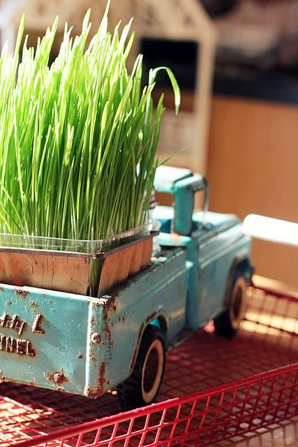 old tin child toy truck with cat grass!