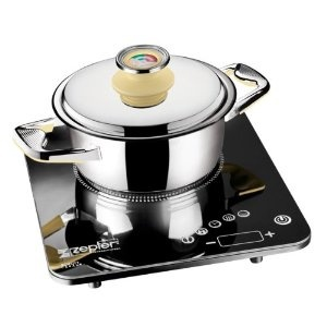 Zepter Pot Masterpiece Cookware Model # Tf-030-20