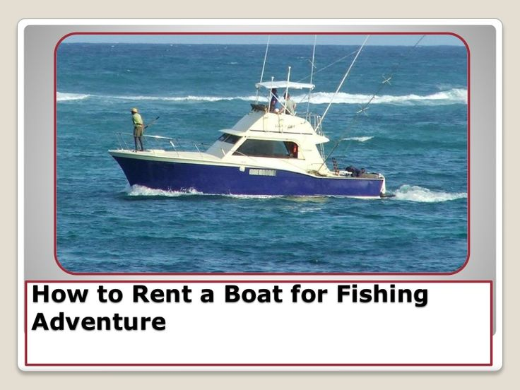 37 best boat rentals miami images on pinterest luxury for Miami fishing party boat