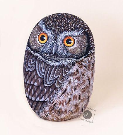 Sassi a p-arte: gufi e civette - owls