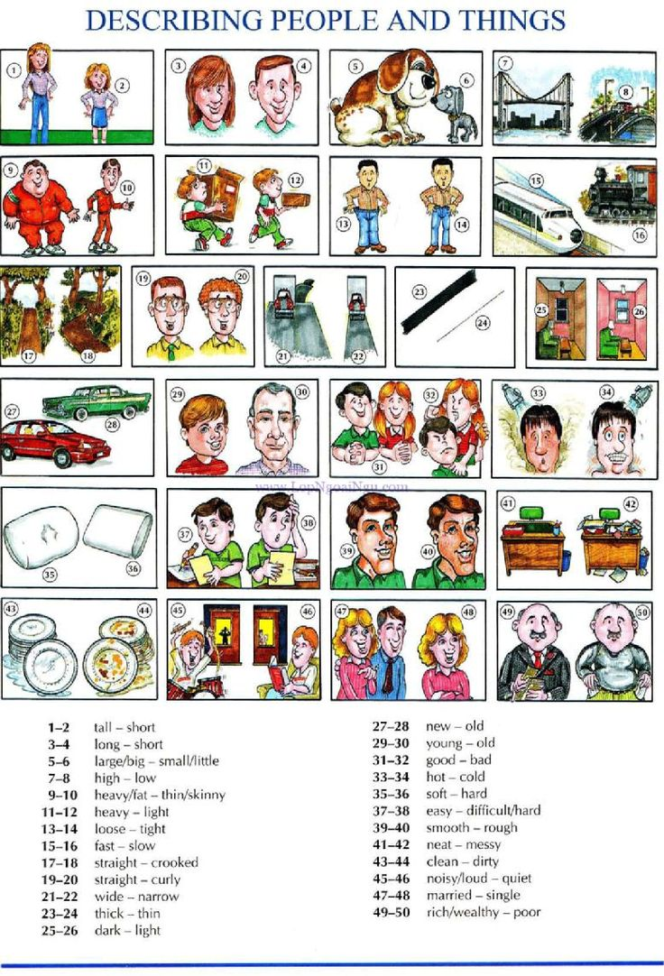 36 - DESCRIBING PEOPLE AND THINGS A - Picture Dictionary - English Study, explanations, free exercises, speaking, listening, grammar lessons, reading, writing, vocabulary, dictionary and teaching materials