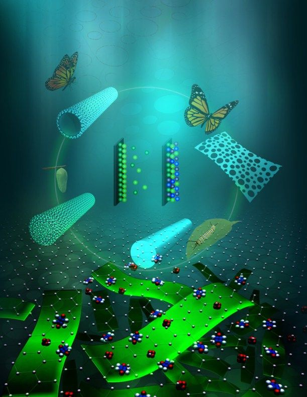 Ultrathin Hierarchical Porous Carbon Nanosheets for High-Performance