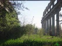 concrete in nature - Google Search