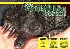 Issue 2 - Wildlife-Echidna & the Platypus. http://wildliferescuemagazine.com/issue-two.html