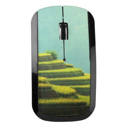 #country - #China agriculture rice harvest wireless mouse