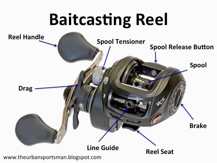 309 best bass fishing images on pinterest for Different types of fishing reels