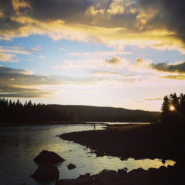 Stensundsforsen, the closest good fishing to Sorsele, Swedish Lapland. Basically ten minutes away on a bike or longboard.#flyfishing #sorsele