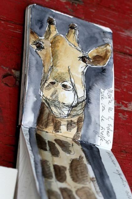 Giraffa #giraphe #giraffa