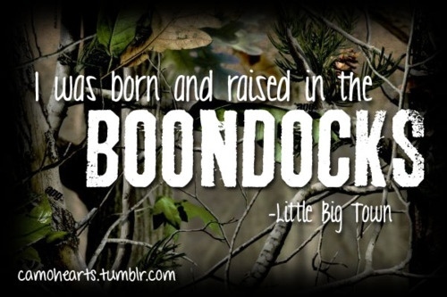 Little Big Town: Small Town, Country Girls, Songs Lyrics, Country Quotes, Country Music, Mr. Big, The Boondock, Little Big Town, Country Wide