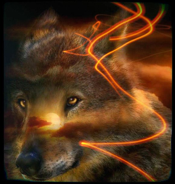 Poissons sont naturellement attirés par le hurlement de loup, un animal qui, selon les chamans traditions indigènes, dans et hors de l'univers mystique; et seulement permettre à l'approche d'un être humain quand ils perçoivent un éclairage sur le terrain de la pureté et de personnes qui se déplacent.