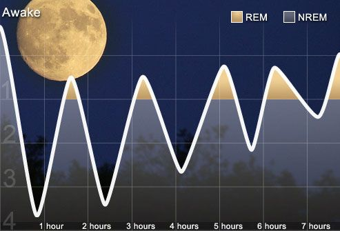 The Sleep Cycle  There are two forms of sleep: REM sleep and non-REM sleep. REM stands for rapid eye movement and is associated with dreaming. It accounts for 25% of normal sleep, coming in longer periods toward morning. The rest of our sleep time is spent in NREM, which consists of four stages from light sleep (stage 1) to deep sleep (stage 4). Sleep disorders interfere with normal sleep cycles, preventing a good night's rest.