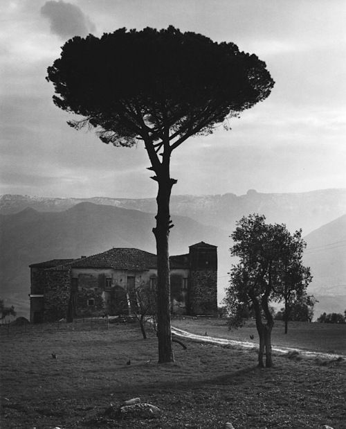 Edwin Smith  Farmhouse Between Auletta and Potenza, Basilicata, 1963