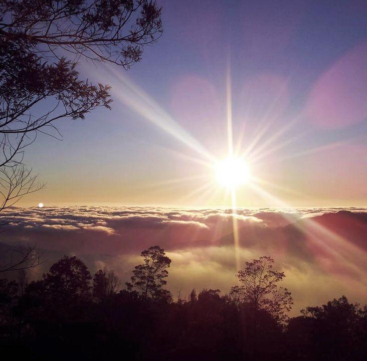 Menanti Golden Sunrise di Puncak Bukit Sikunir Dieng Wonosobo Jawa Tengah | Tour ke Wisata Dieng Jawa Tengah