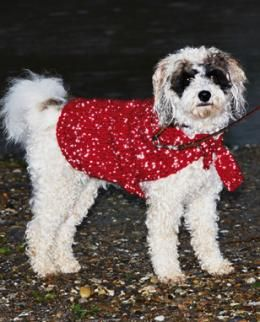 reflecting dog coat keep your pet warm and safe with this dog coat