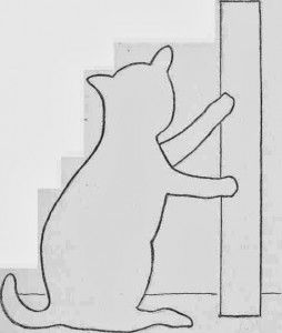 Kedi şablonlarıkedi Kalıpları Kedi Boyama Resimleri Felt