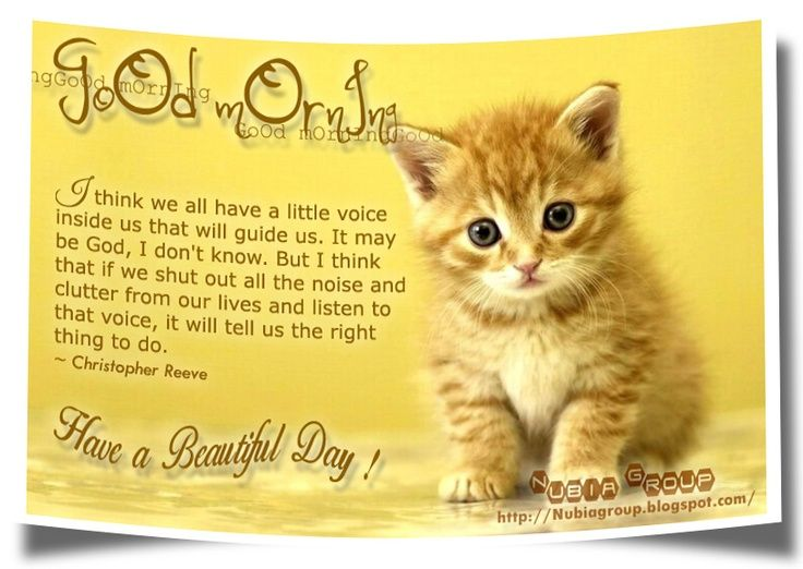 Image Result For Mother Quotes