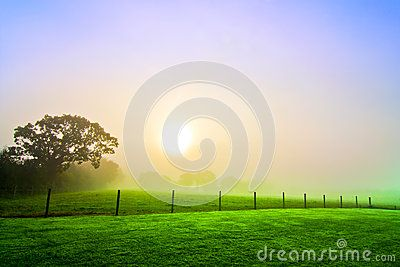 A misty field at sunrise in Cornwall in the west of England