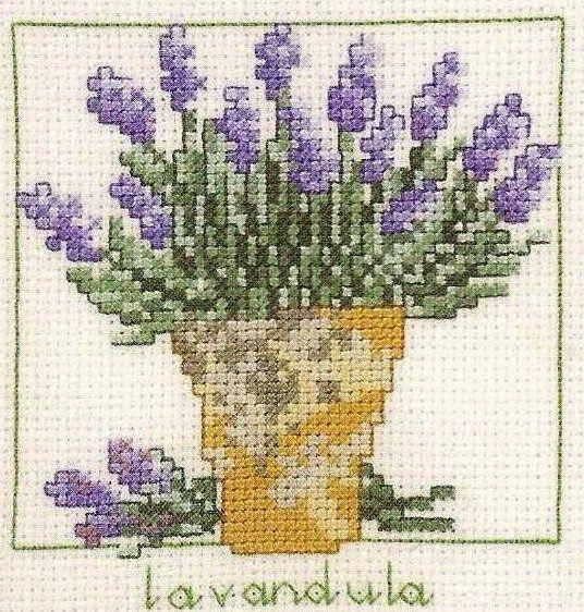 cross stitch lavender (lavendula)