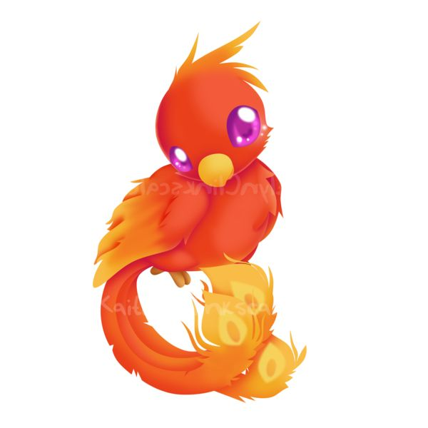 Baby Phönix