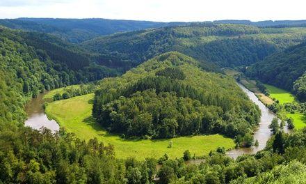Hotel 2G à Saint-Hubert : 1 à 4 nuits, boisson de bienvenue et dîner dans les Ardennes belges: #SAINT-HUBERT 49.00€ au lieu de 96.00€ (49%…