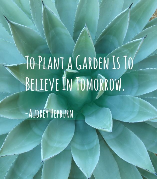 Elegant U201cTo Plant A Garden Is To Believe In Tomorrowu201d Inspirational Quotes
