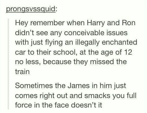 He's definitely James' kid.