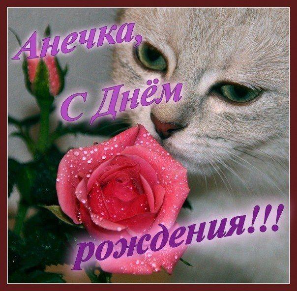 Поздравления с днем рождения открытки с именем анюта