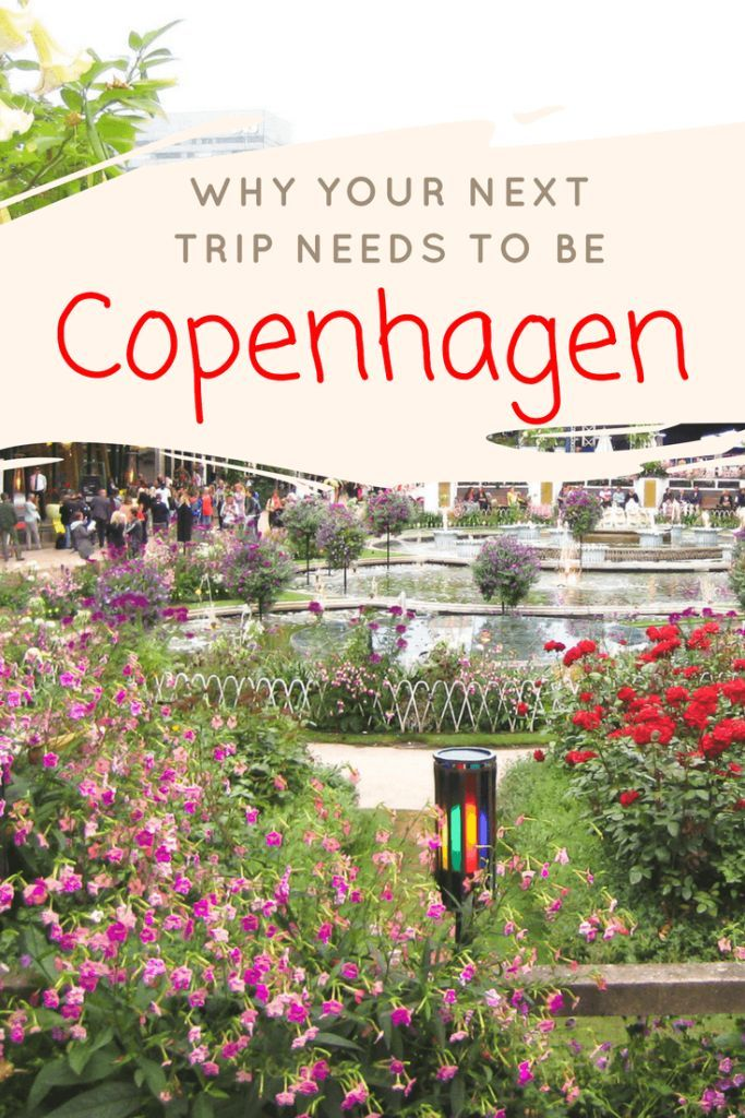 Looking to plan a trip? Here is why your next trip needs to be Copenhagen, Denmark. A city filled with culture, history, and tons more to do. Read about the musts here. | Europe travel destinations | Denmark travel tips | Wanderlust Experts